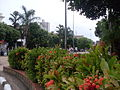 Jardim Central Mogi Guaçu.JPG