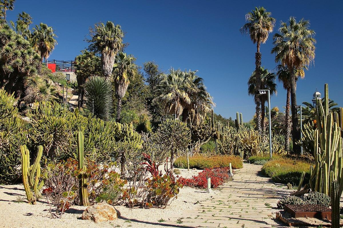 Jardins de Mossèn Costa i Llobera - panoramio.jpg