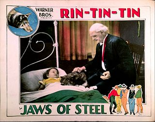 <i>Jaws of Steel</i> 1927 film by Ray Enright