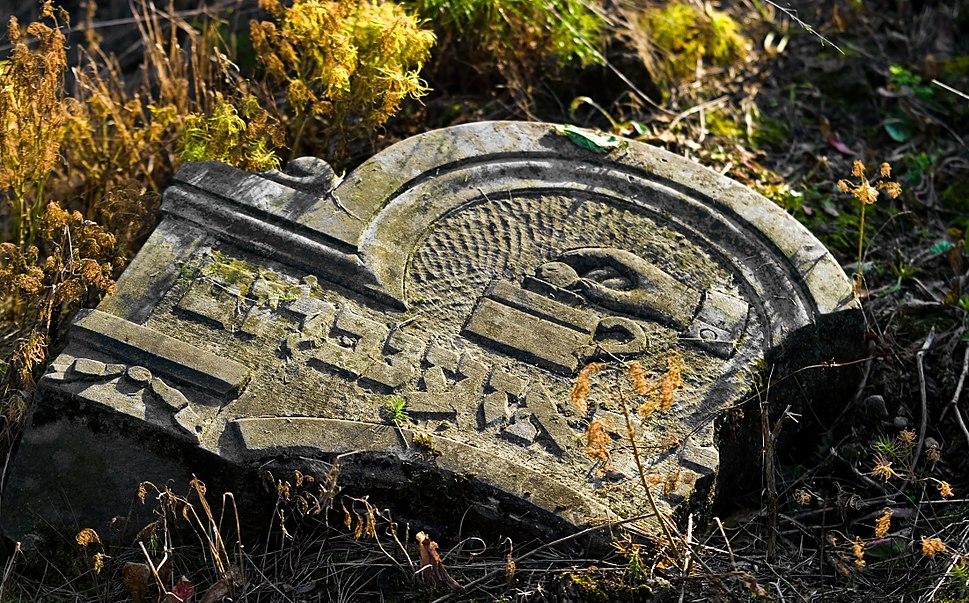 Jewish cemetery Otwock Karczew Anielin IMGP6721
