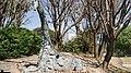 Jirafa Urbana. - panoramio.jpg
