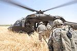 Joint air assault operation in Mushada DVIDS171625.jpg
