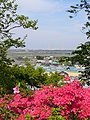 Joyama-park-view,katori-city,japan.JPG