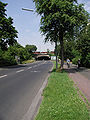 Köln-DB-Unterführung-Zollstockgüttel-035.JPG