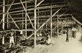 KITLV - 78325 - Kleingrothe, C.J. - Medan - Coolies in a drying barn at the Amsterdam Deli Company in Medan, Sumatra - circa 1900.tif
