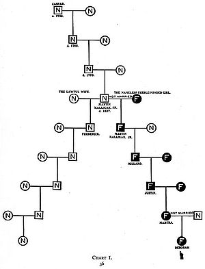 History of eugenics - A pedigree chart from The Kallikak Family meant to show how one illicit tryst could lead to an entire generation of imbeciles.