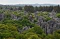 Kamenný les - Shilin - panoramio.jpg