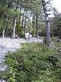 Kapellen, Austria - panoramio.jpg