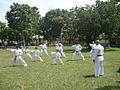 Karate Do.jpg
