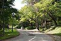 Katsuragaoka Park06s3.jpg