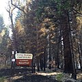 King Fire - Stumpy Meadows Campground (15415151062).jpg