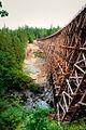 Kinsol Trestle Bridge, HDR App.jpg