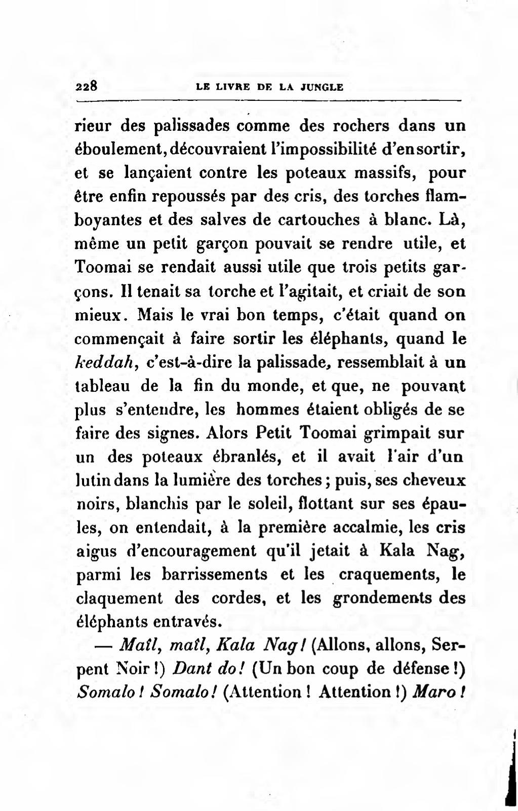Kongle /Écharpe Motif tr/èfle de la Saint-Patrick Noir