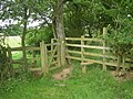 Kissing Gate and stile - geograph.org.uk - 884230.jpg