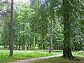 Kowary-Stadtpark.jpg