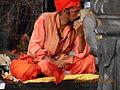 Kumbhmela Nashik 2015 - sadhu in Trimbakeshwar.JPG