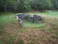 Kung Rings grav, den 4 sept 2005, bild 2..JPG