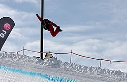 LG Snowboard FIS World Cup (5435941014).jpg