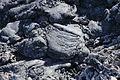 La Palma - Los Llanos de Aridane - Las Manchas - LP-211 - Lava from Llano del Banco 04 ies.jpg
