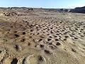 La Perouse NSW 2036, Australia - panoramio - noah.odonoghue (20).jpg