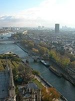 La seine depuis les tours de la cathédrale de Notre-Dame de Paris.jpg