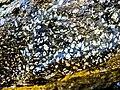Labradorite. (2).jpg