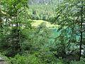 Lacul Alpsee3.jpg