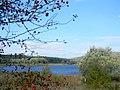 Lago del Pantano Pignola.jpg