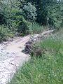 Laio river.jpg