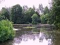 Lake, Dinton Park - geograph.org.uk - 865447.jpg