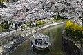 Lake Biwa Canal Cruise in 2019-04 ac.jpg
