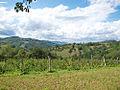 Landscape of Bjelusa - 7408.CR8.jpg