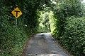 Laneway, County Wicklow - geograph.org.uk - 1817096.jpg