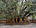 Laos (7325923626).jpg