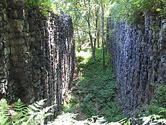 Stone walls, with trees growing between them