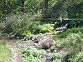 Leinleiterquelle - Abfluss - panoramio.jpg