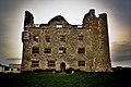 Lemaneagh Castle4.jpg