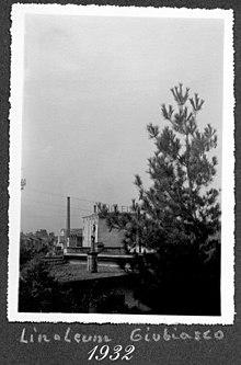 фото первой фабрики по производству линолеума