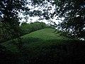 Little Knoll - geograph.org.uk - 444563.jpg