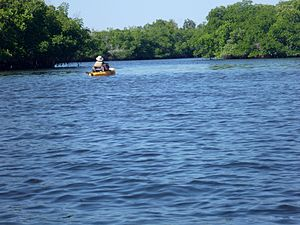 Little Manatee River - Kayaker on the Little Manatee River