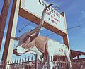 Longhorn Ballroom Sign and Bull.jpg