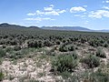 Looking South Across Sagebrush Toward Distant Hills and Mountains - panoramio.jpg