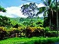 Los Suenos Marriott Costa Rica - panoramio (21).jpg