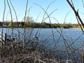 Loscoe Dam - geograph.org.uk - 702175.jpg