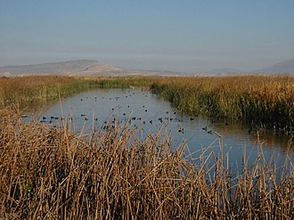 Lower Klamath National Wildlife Refuge - Image: Lower Klamath NWR 8197t