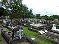 Lutwyche Cemetery 3.JPG