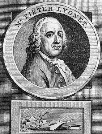 Pierre Lyonnet - Pierre Lyonnet