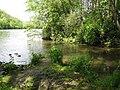 Mündungsbereich in den Neckar bei Poppenweiler.JPG