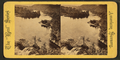 Maine landcape, from Robert N. Dennis collection of stereoscopic views.png