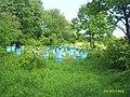 Maleshka valley - panoramio.jpg